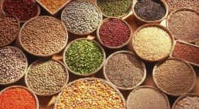 Giá gạo ổn định, thị trường cà phê thế giới nóng lên.