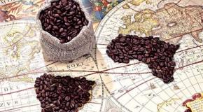 Giá cà phê tăng 300 đồng / kg
