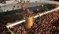 Cà phê xuất khẩu của Việt Nam đang chịu